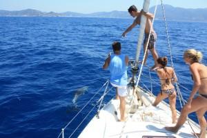 Junge-Leute-Mitsegeln-Delfin